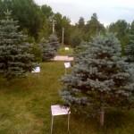 Bäume gepflanzt von den Ländern die den Genozid anerkennen.
